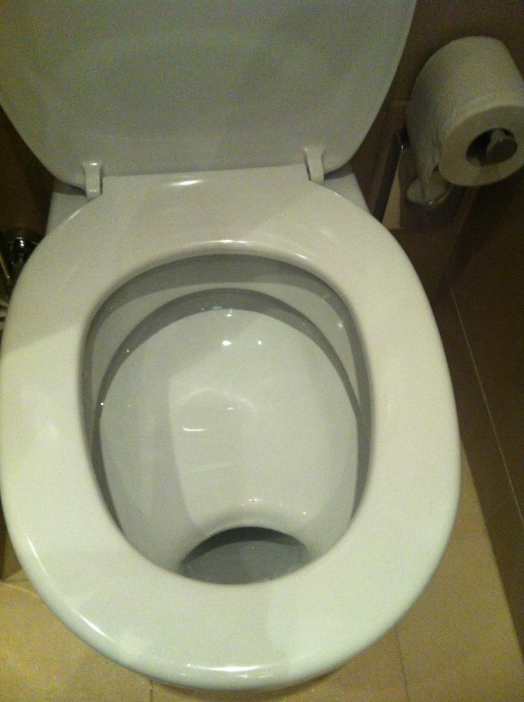 Österrikisk toalett